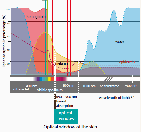 Optimal window of Red Light Therapy wavelengths