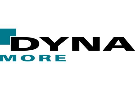 Dynamore GmbH